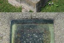 Cemetery's / History / by Victoria Nervo
