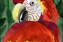 Art Reference - Birds