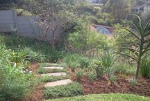 Paving,Pathways & Steps / hardscapes done in our gardens...