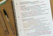 Study and School