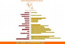 Sites Web - Paula Roulin Prat - Biodanza