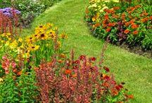 Záhrada-oddych/kvety