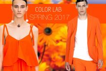 Fashion Colors 2017