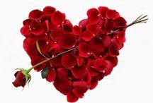St. Valentine's Day / Celebrations in Antalya
