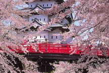 the marvelous japan between culture, art, traditions, history