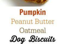 pumpkin peanut butter oatmeal dog treats
