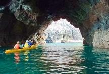 Sea-kayaking / Pictures of our sea-kayaking safari at Pohatu marine reserve