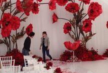 beautiful decor idea
