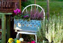 Jardín / Novedades en jardinería