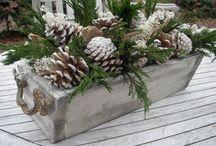 Wintergestaltg. mit Tannenzapfen/Weihnachten