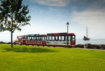 Little touristic train / Discover the city of Morges with the little touristic train.