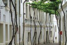exteriores diseño inspiración / by AndreuDisseny