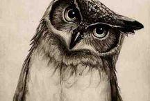 Owl!! Love owls