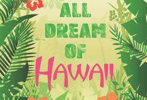 Hawaii | summer 2014