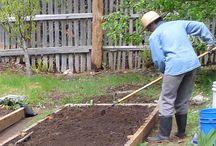Gardening is Healthy / The benefits of gardening