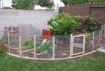 trädgården framtidsplaner!