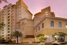 Life is Suite / The Point Orlando Resort is a luxurious, all-suite resort in Orlando, Florida perfect for business travel, honeymoons, or travelers visiting #Universal or #Disney.   #Orlando #Travel #Hotel #Resort #Luxury