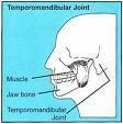OT Low oral muscle tone