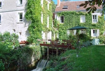 Fishing Gites - Touraine Loire Valley / For the fishing lovers and for those who wish to relax at the edge of the water.  Here is our selection ofgites situated in a place of fishing or very close (river, private pond).