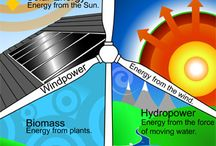 Renewable / Posts from our blog on renewable living!