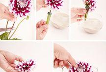 dekorace kvetin