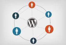 How to Hiring for A Best Wordpress Development