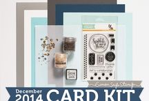 Cards: SSS December 2014 / by Cindi Lynch