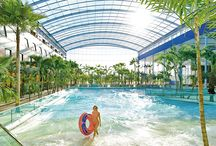Wavepool Area / Even more bathing fun and holiday feeling in unique surroundings is wating for you in the amazing Wavepool Area of THERME ERDING.