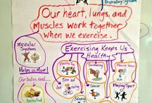 Making Learning Visible in PE / Examples of learning journeys I make visible in PE.