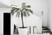 Beach style apartment