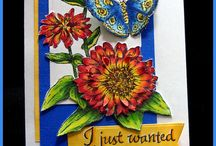serendipity stamps/cards / by Carol Sciortino