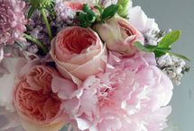 Mother's Day / by Daphne, Published Interior Designer