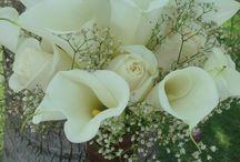 Wedding Bouquets / by Hannah Brinker