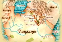 Safari en Tanzanie / La terre des Masaïs