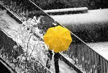 yellow  .....