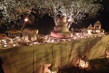 Chiara e Gianlu wedding / wedding in Argiano