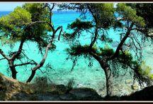 Near Sarti / Best Holiday Destination (Nikon coolpix L310)
