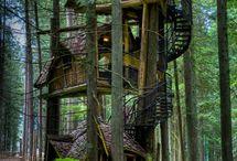 casa su' albero