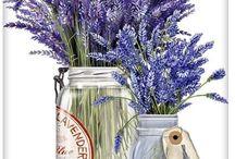 рисунки цветы, открытки