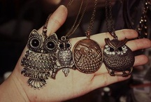 Many owls for inspiration
