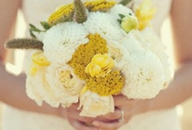 Wedding Bouquets & Wedding Flowers / Wedding Bouquets & Wedding Flowers