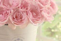 Flores ♡