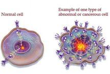 Cancer Information / by Rebekah Seljan ☀️