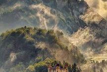 Reizen / Tuin van Monet