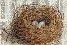 Nesting....!