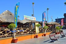 Taco Factory - A Favorite San Felipe Mexico Restaurant / The Taco Factory restaurant on the San Felipe Malecon boardwalk is a favorite hangout with San Felipe vacationers.  Not only is the food great, but it's a strategic place for people watching courtesy of it's slightly elevated palapas overlooking the boardwalk.