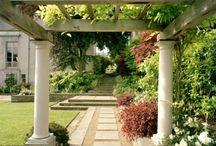 Garden Perfect / by Jason Jenkins