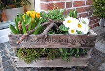 stroiki z kwiatami