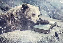 Bibliotheca / by Karen Olson