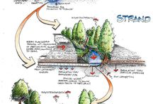 Stormwater / Stormwater Management